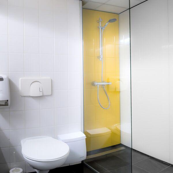 Badkamer Glazen Wand.Achterwand Voor Douche Of Bad