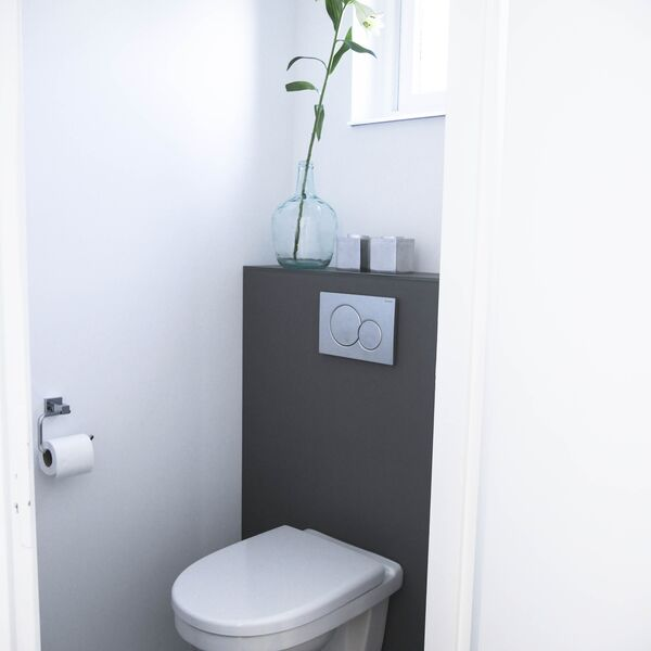 Glazen toiletachterwand